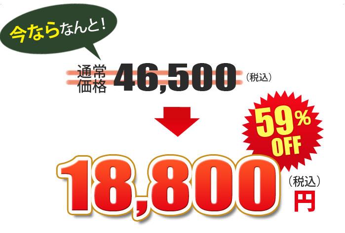 芝生専用転圧ローラー芝の転圧作業用 DLR-500 価格