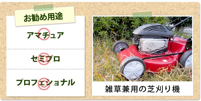 特徴1:雑草にも使えて、仕上がりの早い、プロ仕様の芝刈り機